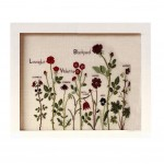 PANDA SUPERSTORE [Red Roses]DIY Cross-Stitch 14CT Counted Embroidery Kits Art Craft(13.3*9.8'')