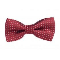 Fashion Designed Adjustable Neck Bowtie Boys Bow Tie [Red, B]