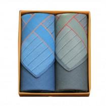 2Pcs Mens Pocket Square Hanky Pure Cotton Soft Handkerchiefs,Retro Blue/Green