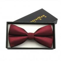 Fashionable Formal Clothes Wedding Party Ties Necktie Bow Tie, H
