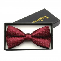 Fashionable Formal Clothes Wedding Party Ties Necktie Bow Tie, N
