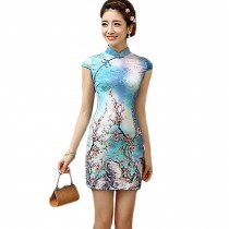 Women Chinese Wintersweet Pattern Cheongsam Qipao One Piece Dress(Large)