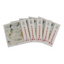 5 Pieces B1-5# Guzheng Strings for Professional/Music Instruments