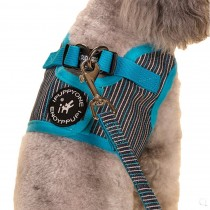 Vest Leashes - Dog Harness Leash--??L Size: Bust 46cm??Blue Bars
